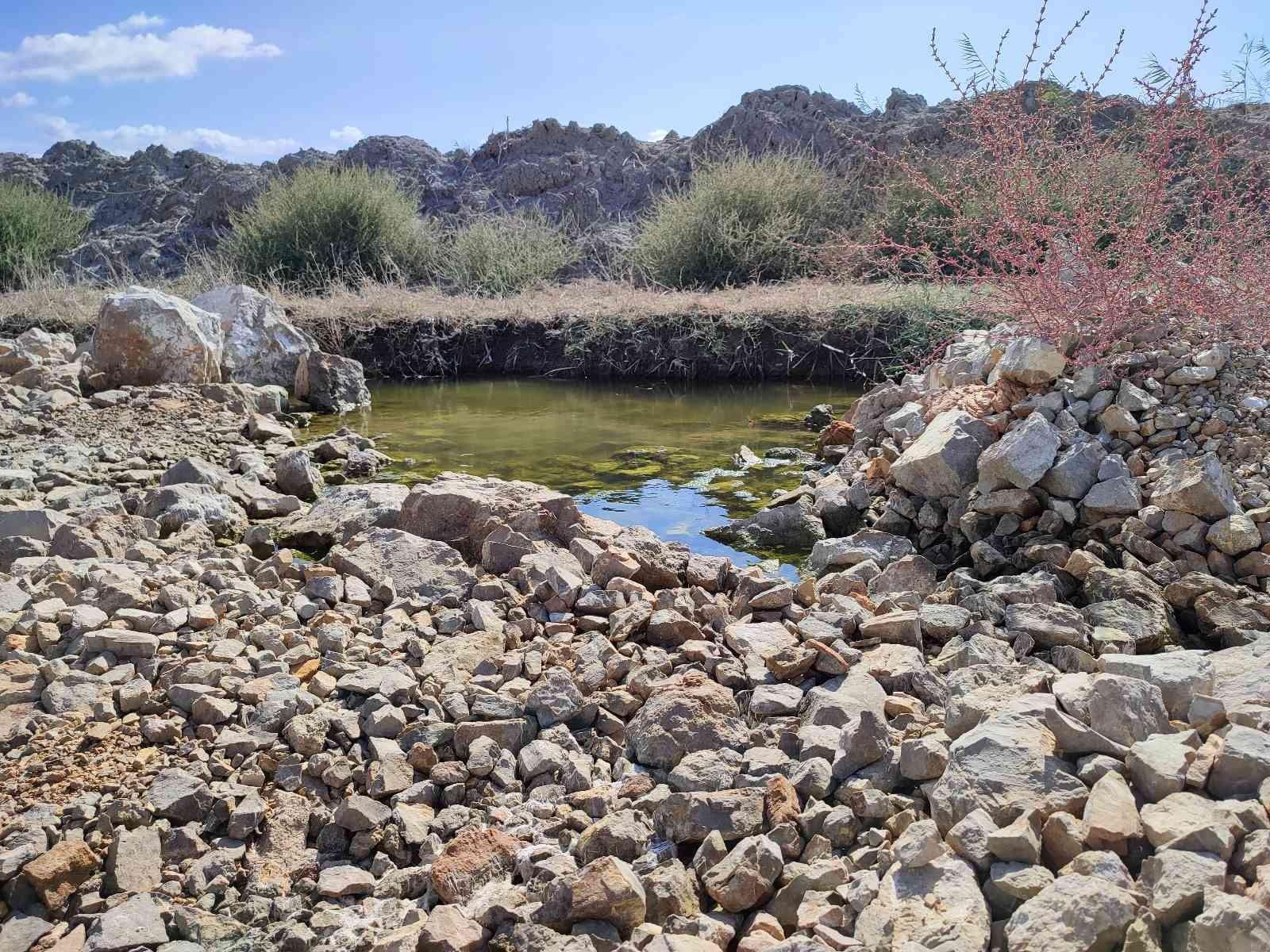 Kuş cenneti moloz yığını ile kirletilmeye devam ediyor
