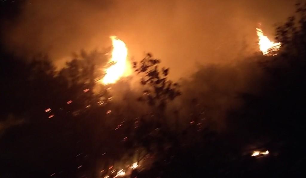 Lübnan'ın kuzeyindeki orman yangınına ordu müdahalesi