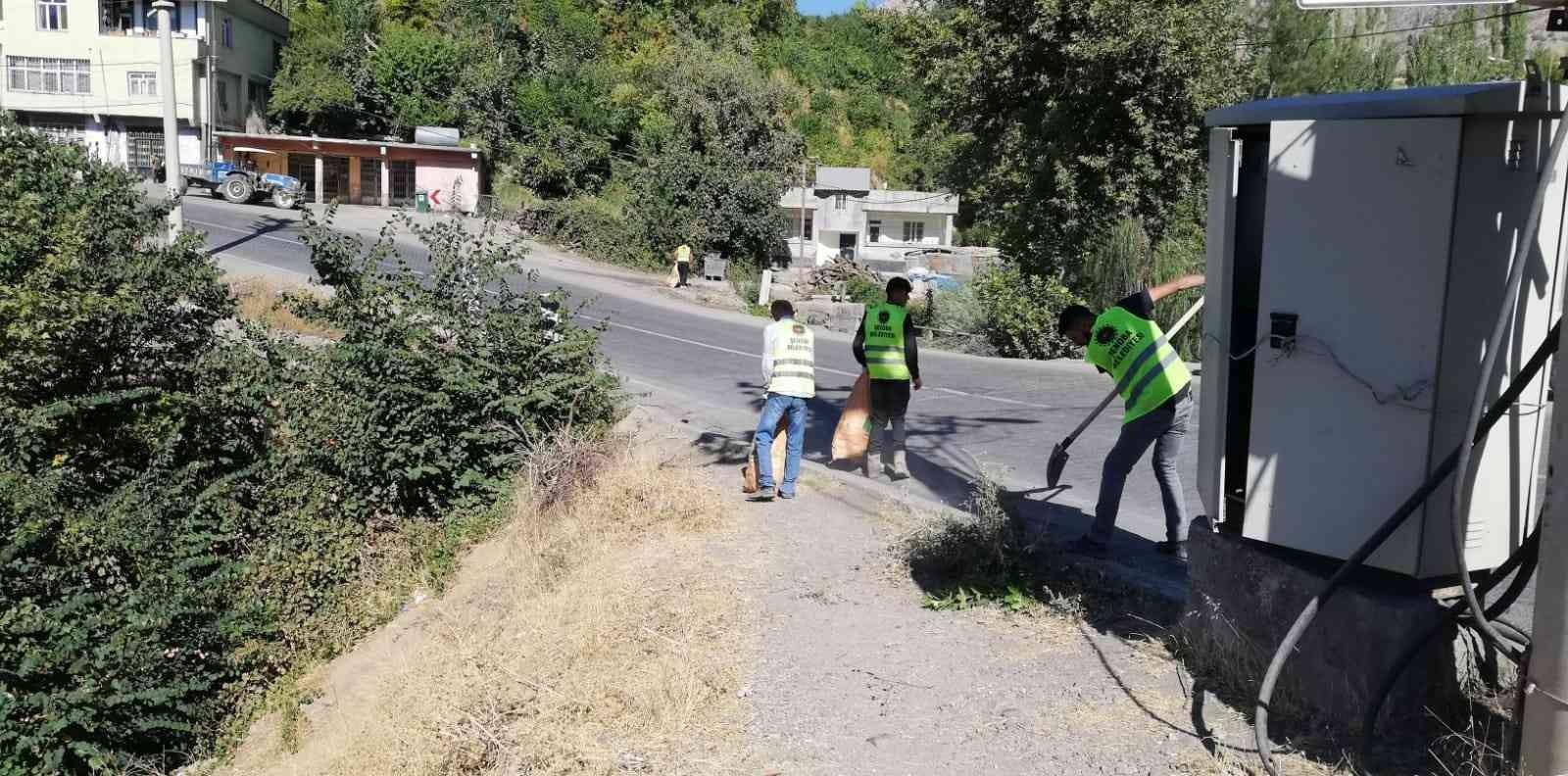 Şenoba belediyesinden sonbahar temizliği